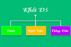 Tổng hợp các môn học, ngành học và trường học khối D5