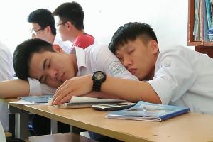 Cách học và ôn thi môn Ngữ Văn để không buồn ngủ